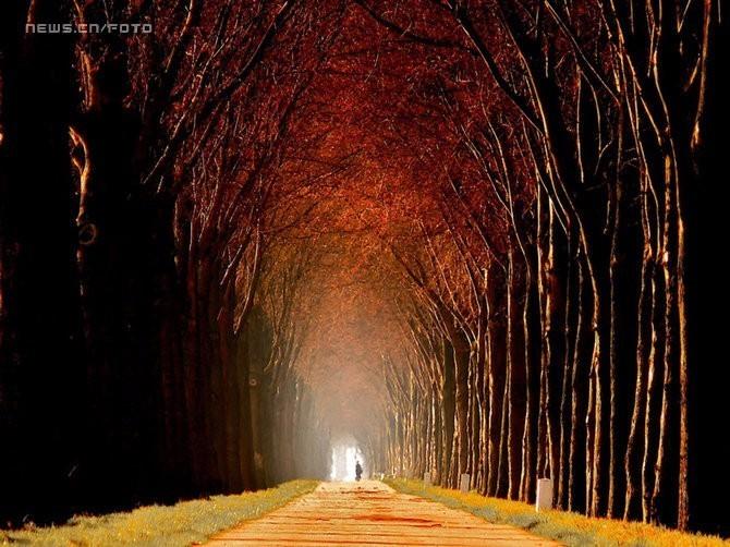 美到极致的大自然--秋的色彩