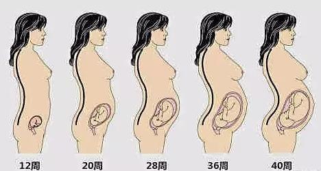 看看,9个月的你把妈妈肚子挤成什么样