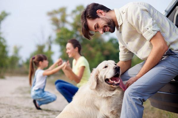 """狗狗用这10种方式表达""""我爱你"""",就看你懂不懂"""