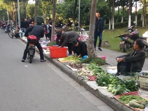 宁波禽类批发市场,地处海曙。马路已成小摊贩的乐园!