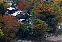 調色板,日本合掌的秋天