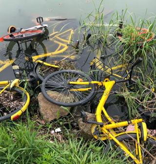 去东钱湖散步,一堆单车被扔进湖里。