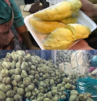 游泰国找到榴莲山,吃到胖10斤的节奏!