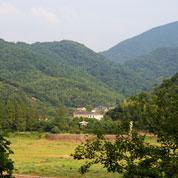 这个山村太美了