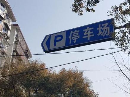 """沿着""""P""""字指引,停进""""私家地界""""。还被老太婆嫌弃"""