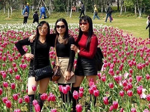 宁波植物园里春意盎然,但游客们赏花也要注意素质