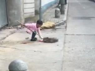 宁波街头,4岁小姑娘,5点起来帮妈妈扫马路