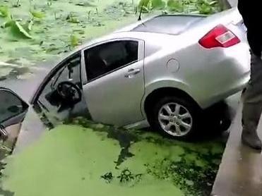 在走马塘,一辆轿车冲进荷花塘了!还好司机命大