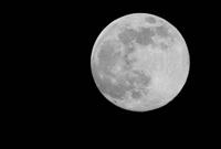 """昨晚的""""超级月亮"""",太美"""