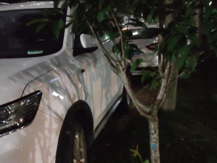 拆迁小区为啥常有这种停车现象?堵路堵门,破坏绿化…