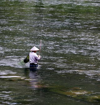 河中钓鱼人真多,上鱼还挺快