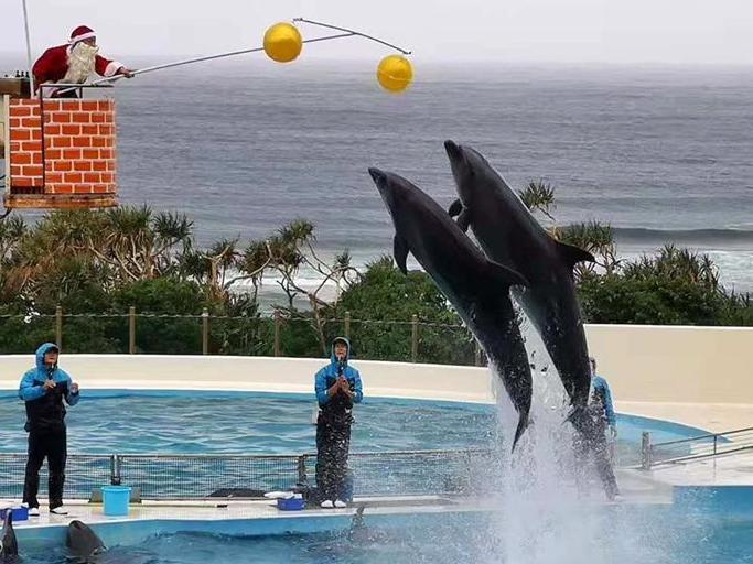 """一年前,曾去冲绳旅游。水族馆是""""海王级""""的"""