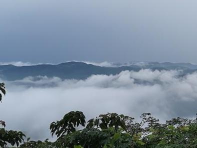 近日雨水多,有幸在宁波某座山的山顶拍到了云海!