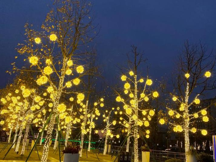 宁波不是在节电节水吗?文化广场竟然给树都穿上灯衣
