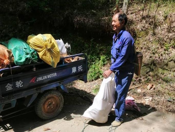 上山看到农民在挖笋,辛苦一整天也就赚两百多块钱