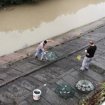 难得天气凉爽,弄点鱼获找乐子