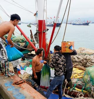 开渔节!奉化莼湖渔港码头一派繁忙景象