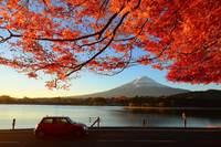 ●●(特惠 ) 宁波口岸  本州北海道玩雪双温泉浪漫7日游