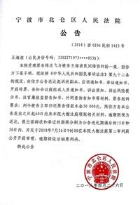 王海波应诉材料送达公告